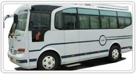 Divya Travels